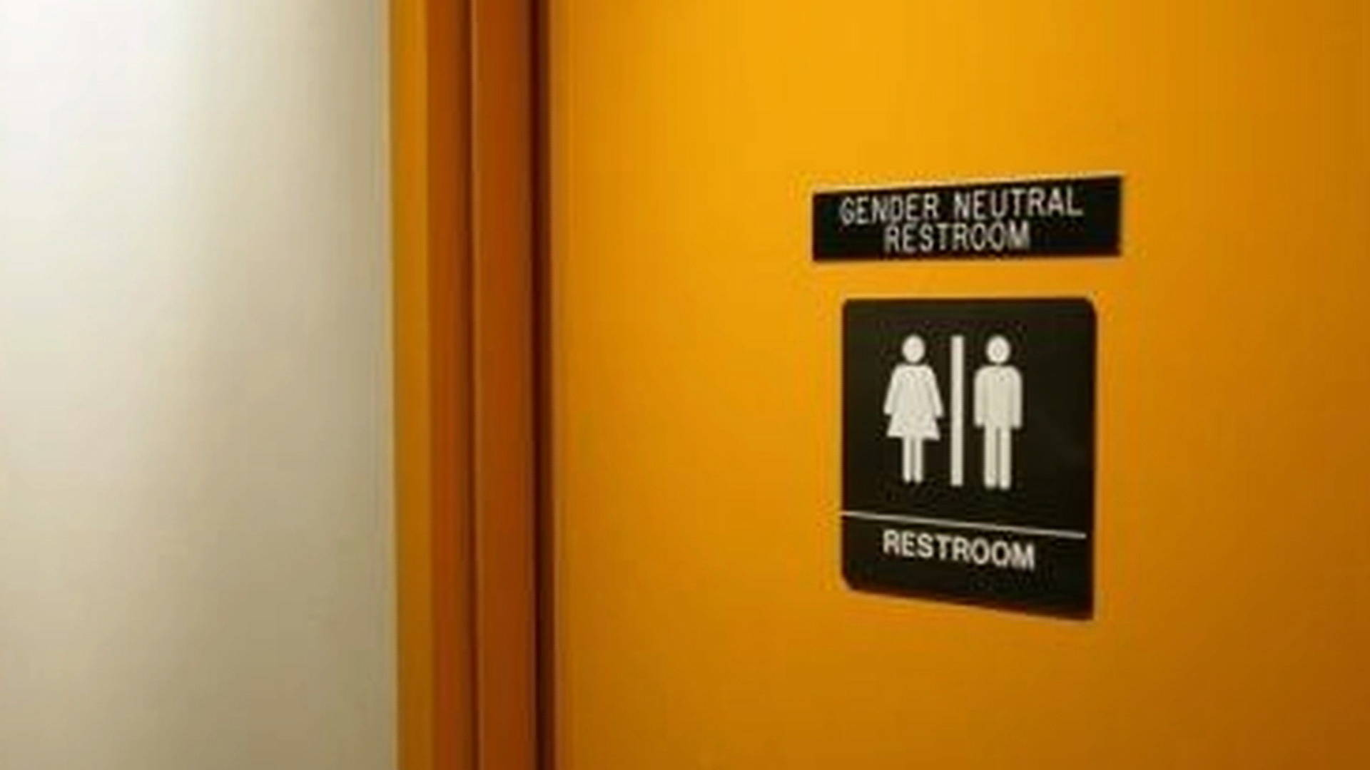 Court Blocks Obama Directive Saying Trans Students Can Use Bathroom Of Choice Democracy Now