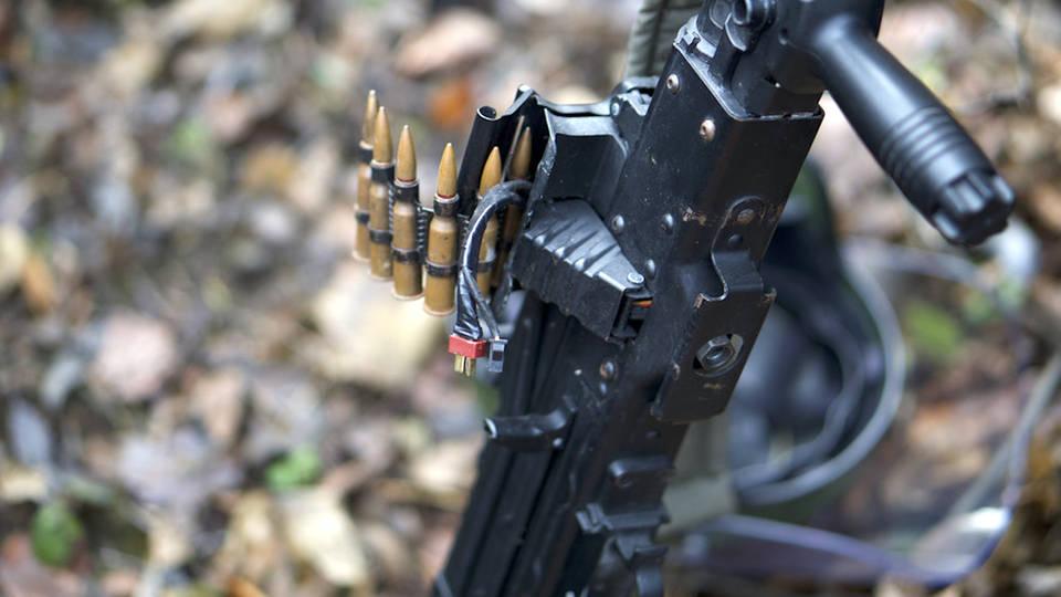 H14 new zealand bans assault weapons
