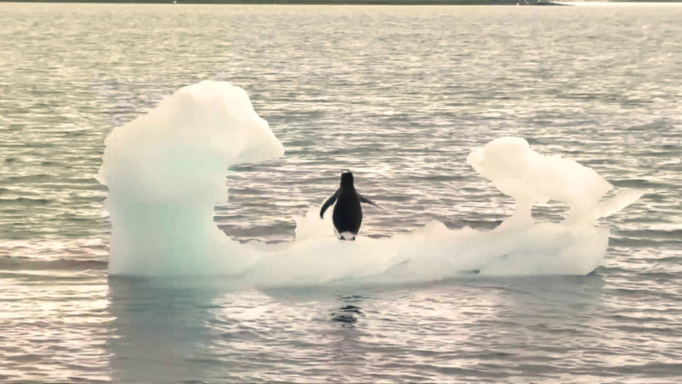 H2 antarctic melt