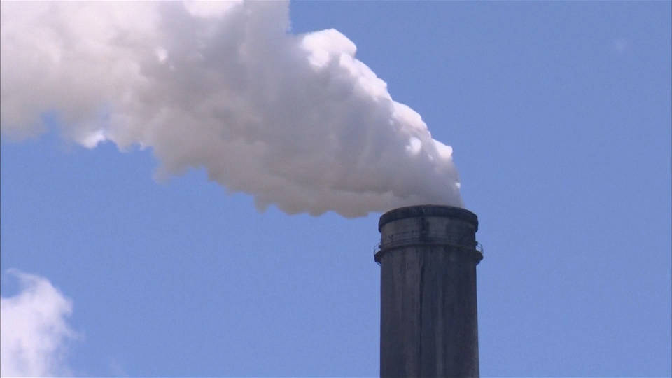 H2 trump coal