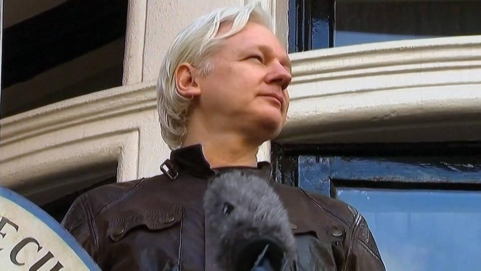 H16 julian assange