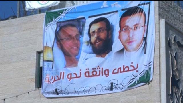 Hdls6 palestine