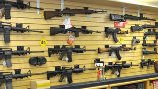 H17 florida passes limited gun control measures