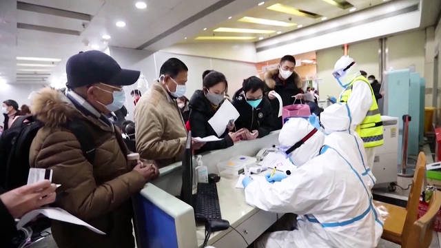 H2 coronavirus death toll reaches 81 china disease spreads around the world