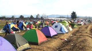 Hdlns5 refugees