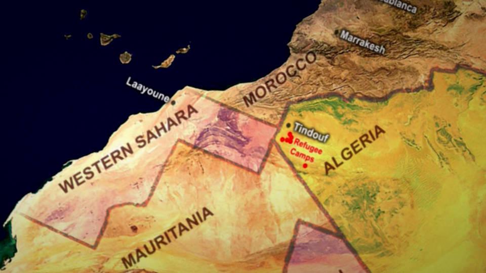 H11 morocco western sahara