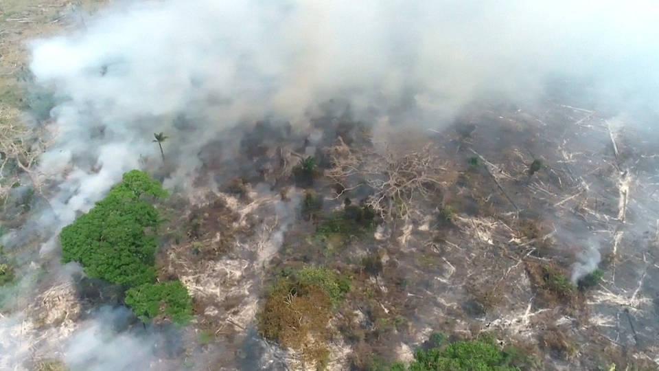 H3 brazil prosecutors investigation para agriculturalists fire day bolsonaro amazon wildfires logging mining deforestation