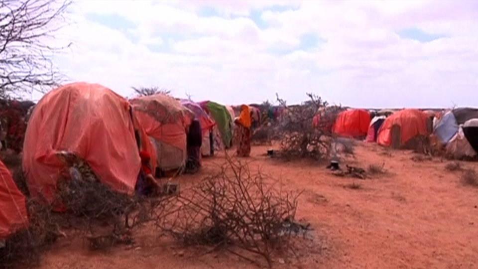 H02 somalia cholera