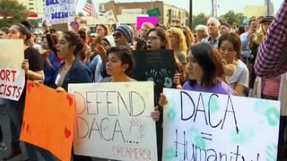 H7 defend daca protesters