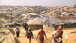 h16 rohingya repatriation
