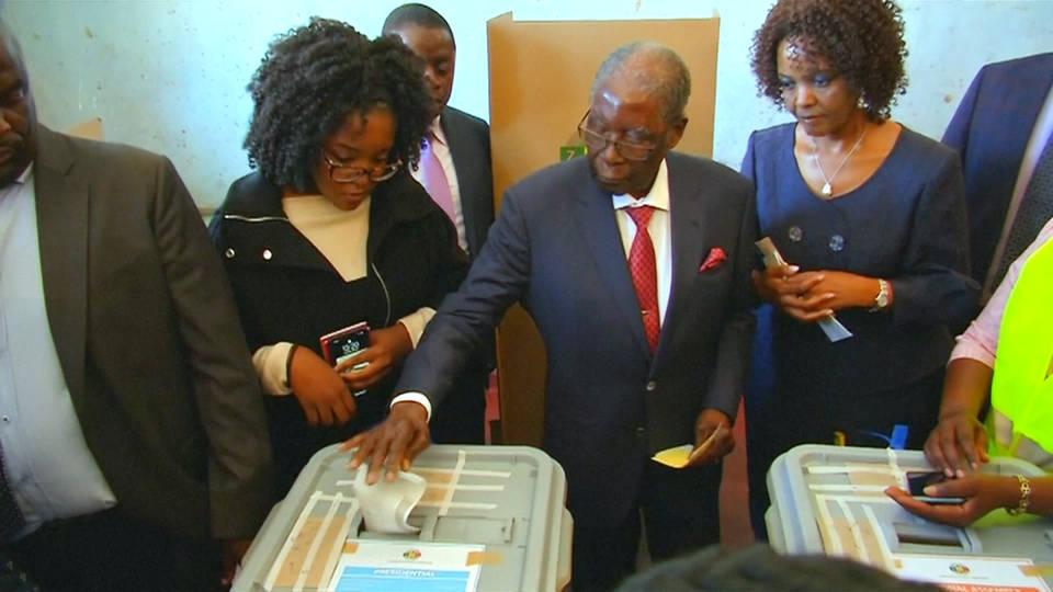 H11 zimbabwe elections