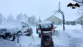 H11 snow cold