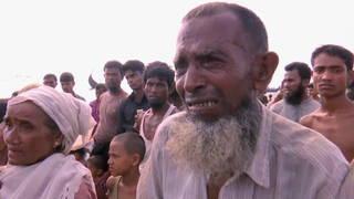 H5 rohinga