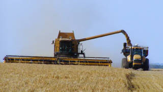 H4 trump bails out farmers from own trade war