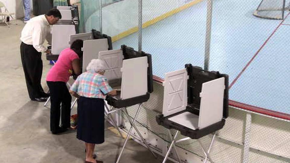 H13 voting