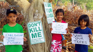 H10 india saves the trees