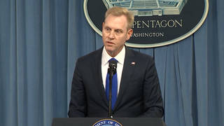 H1 stranahan defense secretary resigns domestic violence
