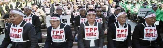 Tpp japan