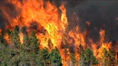 """This Is Just the Beginning"": Forest Fires, Deadly Storms, Record Heat Reveal a Changed Climate"