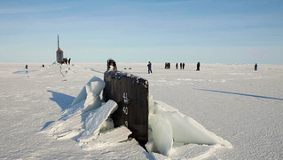 Buttons arctic militarism 1