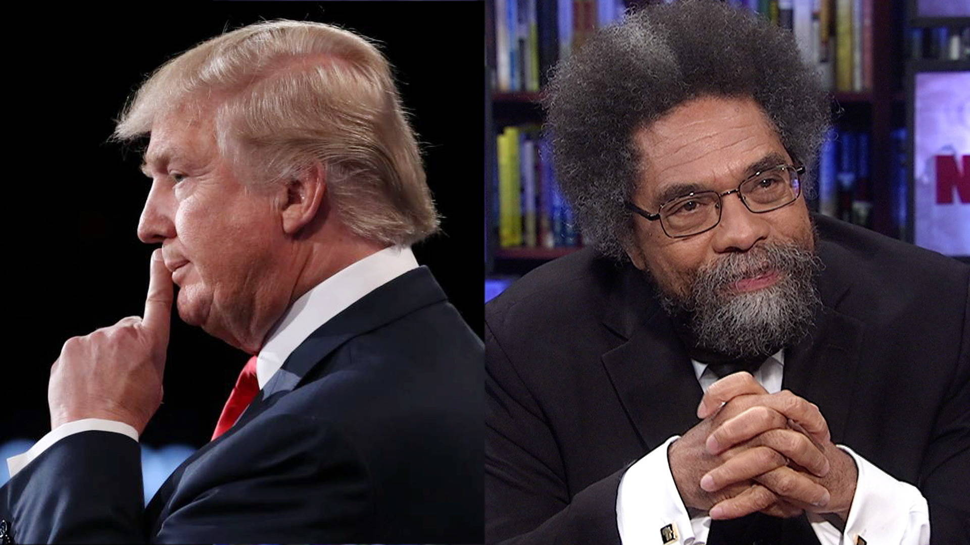cornel west democracy matters thesis Criminal intent episode anti-thesis was based on west's conflicts with cornel west, democracy matters, p 101 cornel west topic cornel ronald west.