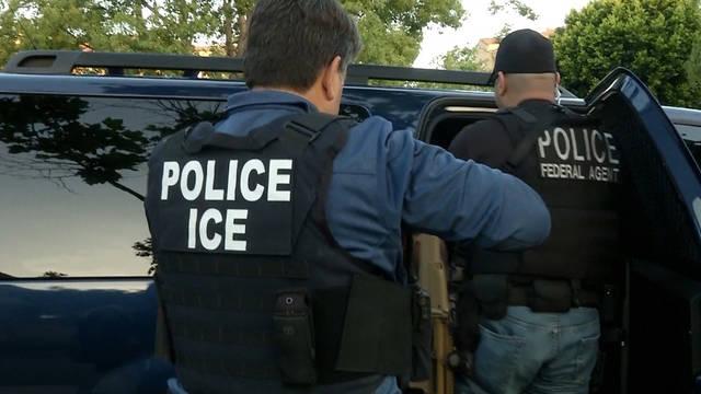 Seg1 ice arrests 1