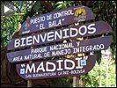 Madidi web