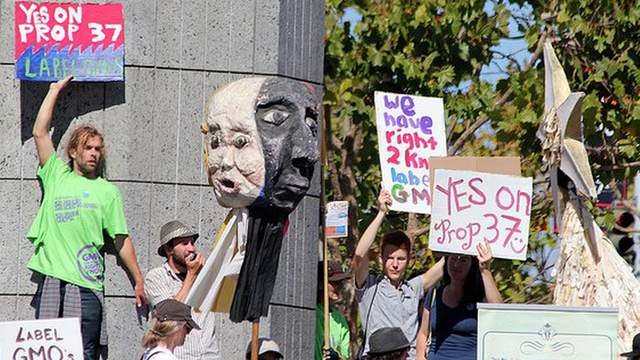 Prop 37 protests