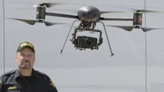 Domestic drones
