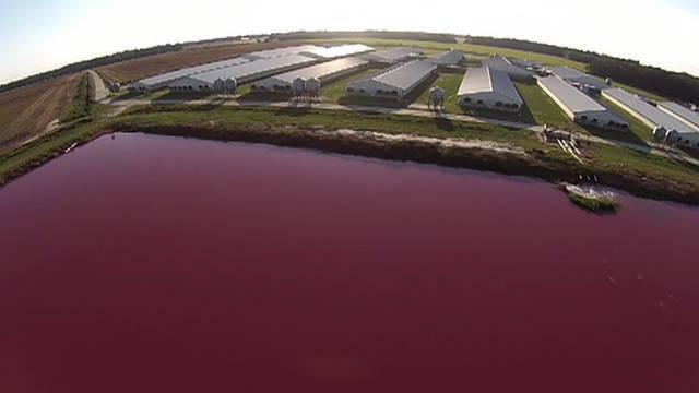 S4 hog farm aerial