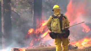 Wildfires noam chomsky camp fire