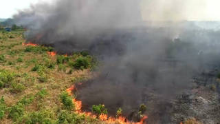 Seg2 amazon fire 1