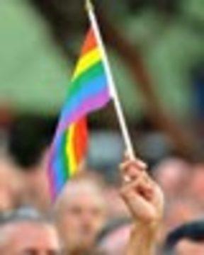 Gay flag web