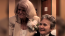 """Edie & Thea: A Very Long Engagement"": Film Portrays Lesbian Couple Behind Defense of Marriage Case"