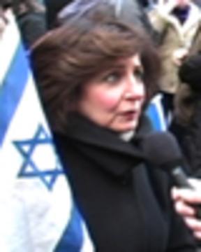 Israeldemoweb