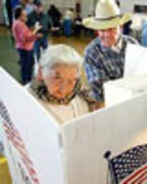 Votersflag