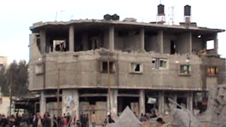 _where_should_the_birds_fly_