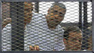 Buttons aljazeerajournalists cage 1