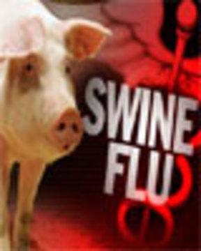 Swinefluweb