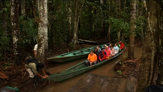 1209_seg03_amazon-rainforest2