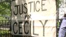Justiceforcecilymcmillan