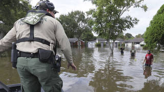 Seg border patrol flood