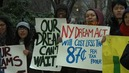 DREAM Act Narrowly Fails in NY Senate After Gov. Andrew Cuomo Failed to Push Passage