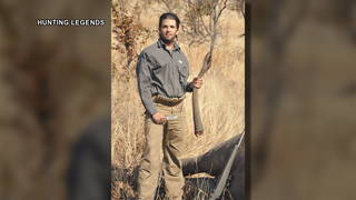 h14 trump jr elephant kill