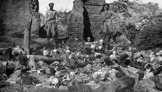 Armenian genocide deaths sheyxalan