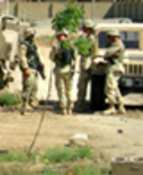 Falluja soldiers