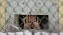 Obama Vows to Seek Guantánamo Closure, But Immediate Action Could Prevent Hunger Strikers' Deaths