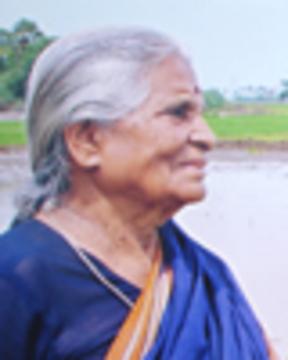 Krishnammalweb