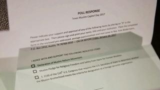 S8 survey