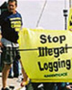 Illegallogging